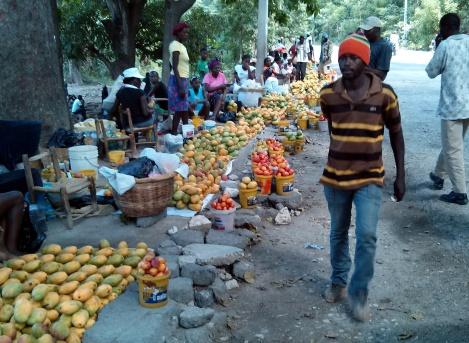 isaac-gardner-haiti-mangoes-2
