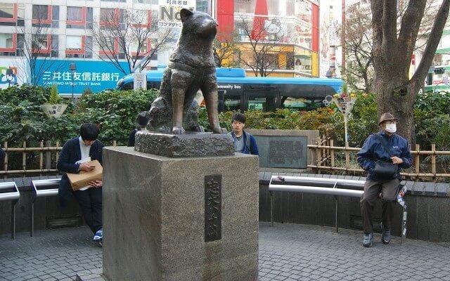 shibuya6346-e1424879116113